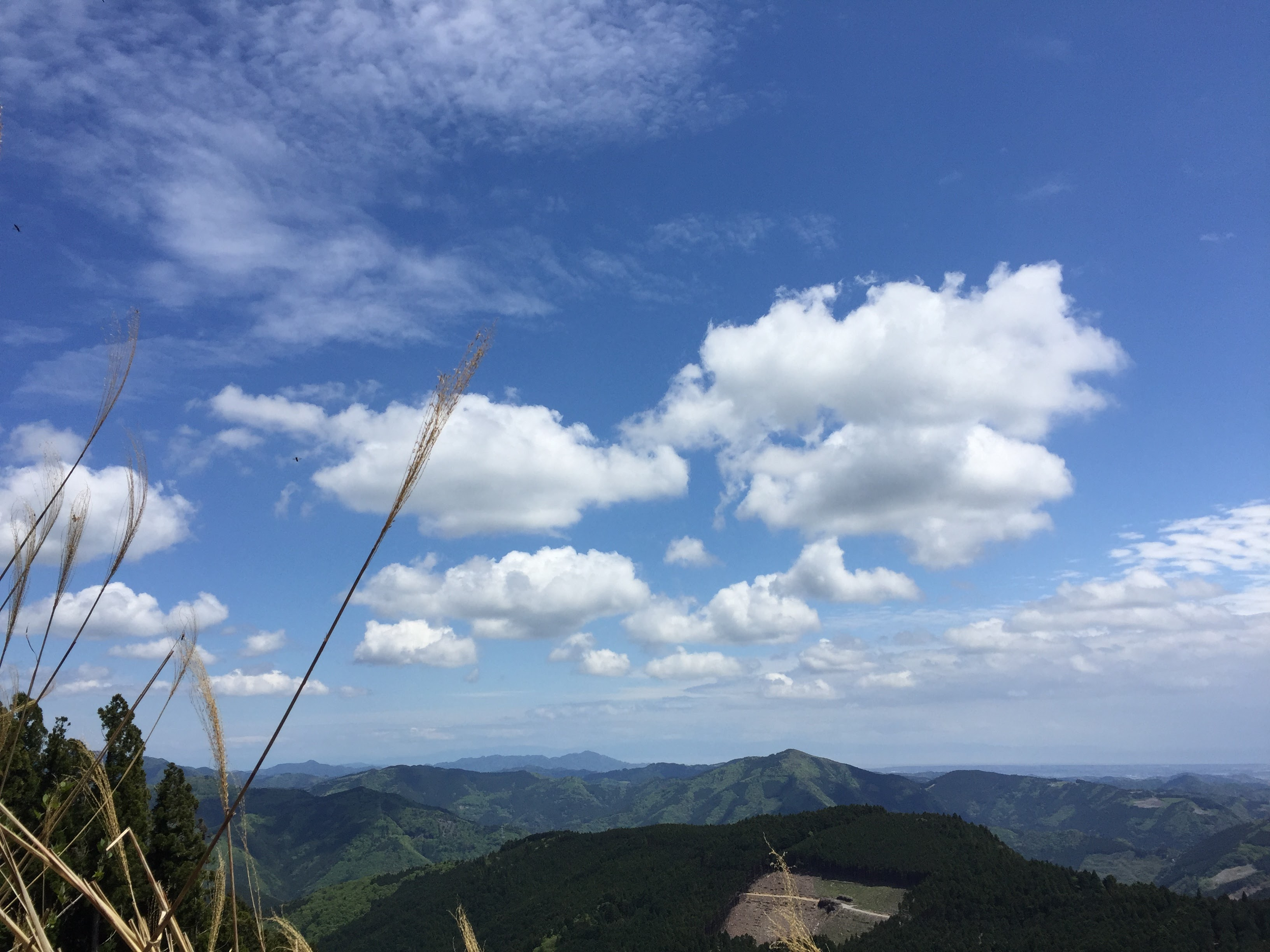 八高山(はっこうさん)